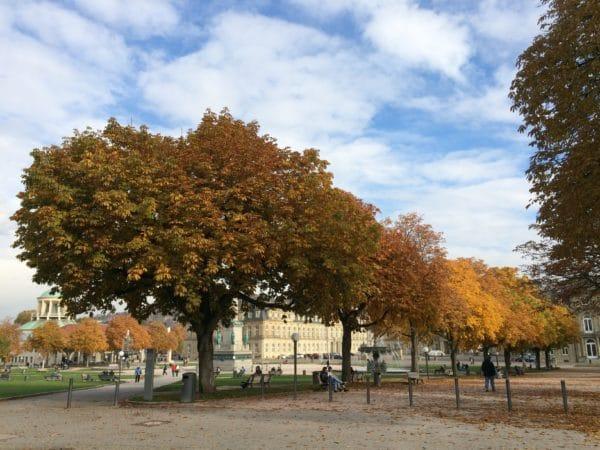 Stuttgart im Herbst: Schlossplatz - Foto © Welz