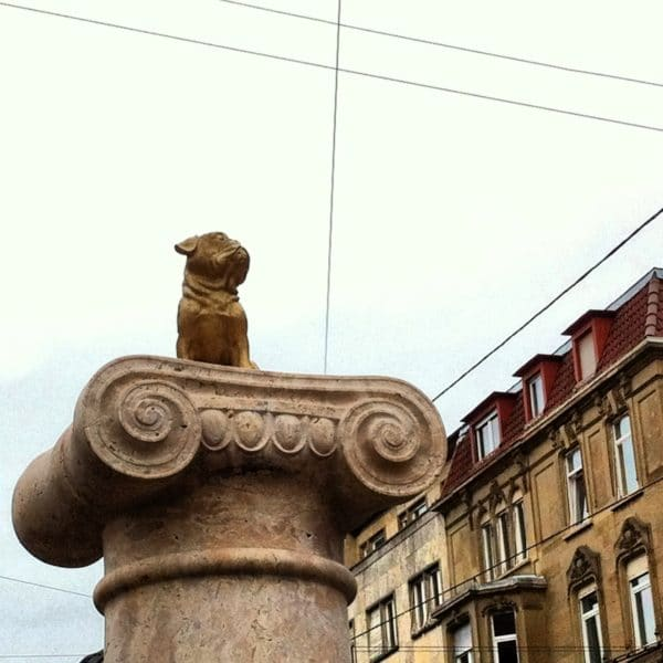 Stuttgart: Ein Leben ohne MOPS ist sinnlos. Dezember 2013 Foto © Welz