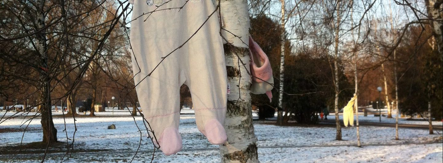 Auch die Birken wurden gefällt ... 14.02.2012 - Foto: Welz