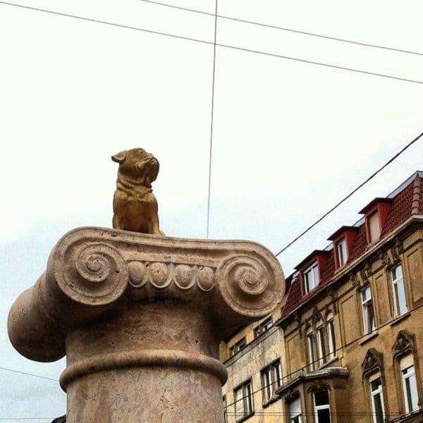 Aufgetaucht: ein kleiner goldener Mops auf der Loriot-Säule am Eugensplatz - Foto © Welz