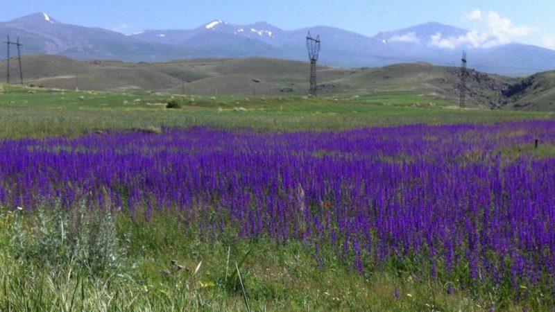 Armenien.  Foto © Welz