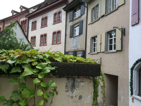Mein Spaziergang führt mich zurück nach Großbasel. Auch hier gibt es Staffeln wie in Stuttgart. Wurde hier ein Harry Gelb schon entfernt? Foto © Welz