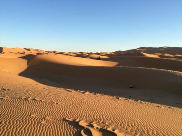 Erg Chebbi: Dünenlandschaft mit 2 Kamelen, ein Suchbild. Foto © Welz
