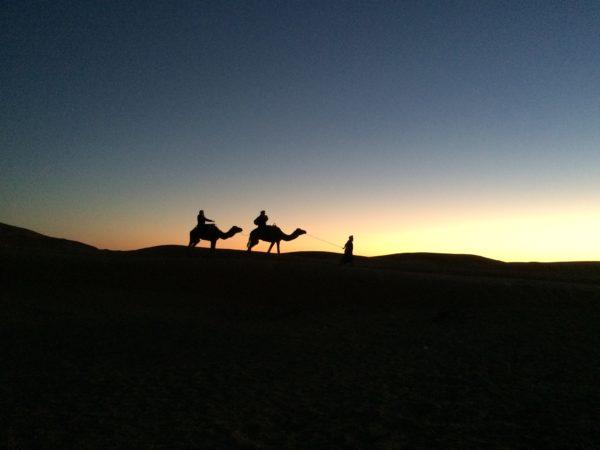 Sonnenuntergang in Erg Chebbi: auch unsere Kamelreiter kommen zurück. Foto © Welz