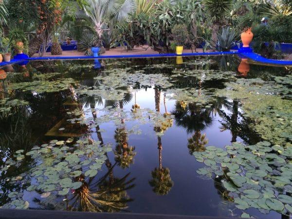 Der Seerosenteich im Jardin Majorelle Marrakech - Foto © Welz